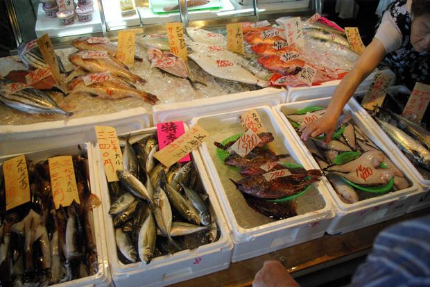 20120630_kotsubo_2.jpg